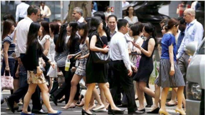 新加坡超过1100名PMET通过职业支援计划找到工作