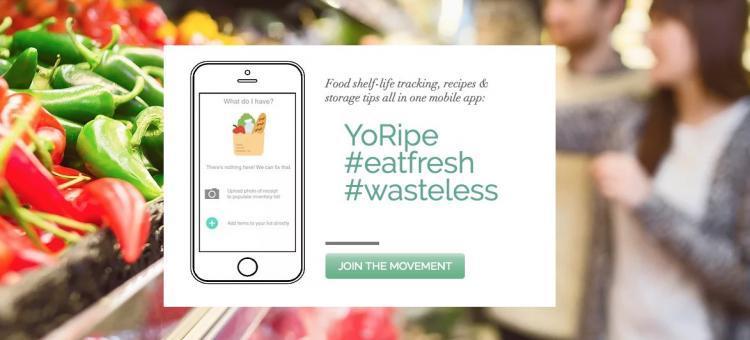 新加坡为减少食物垃圾,研发应用记录食材有效期!